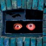 ¿Cómo se debe actuar ante los desperfectos y vicios ocultos en viviendas?