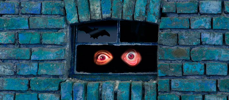 Vicios ocultos en viviendas